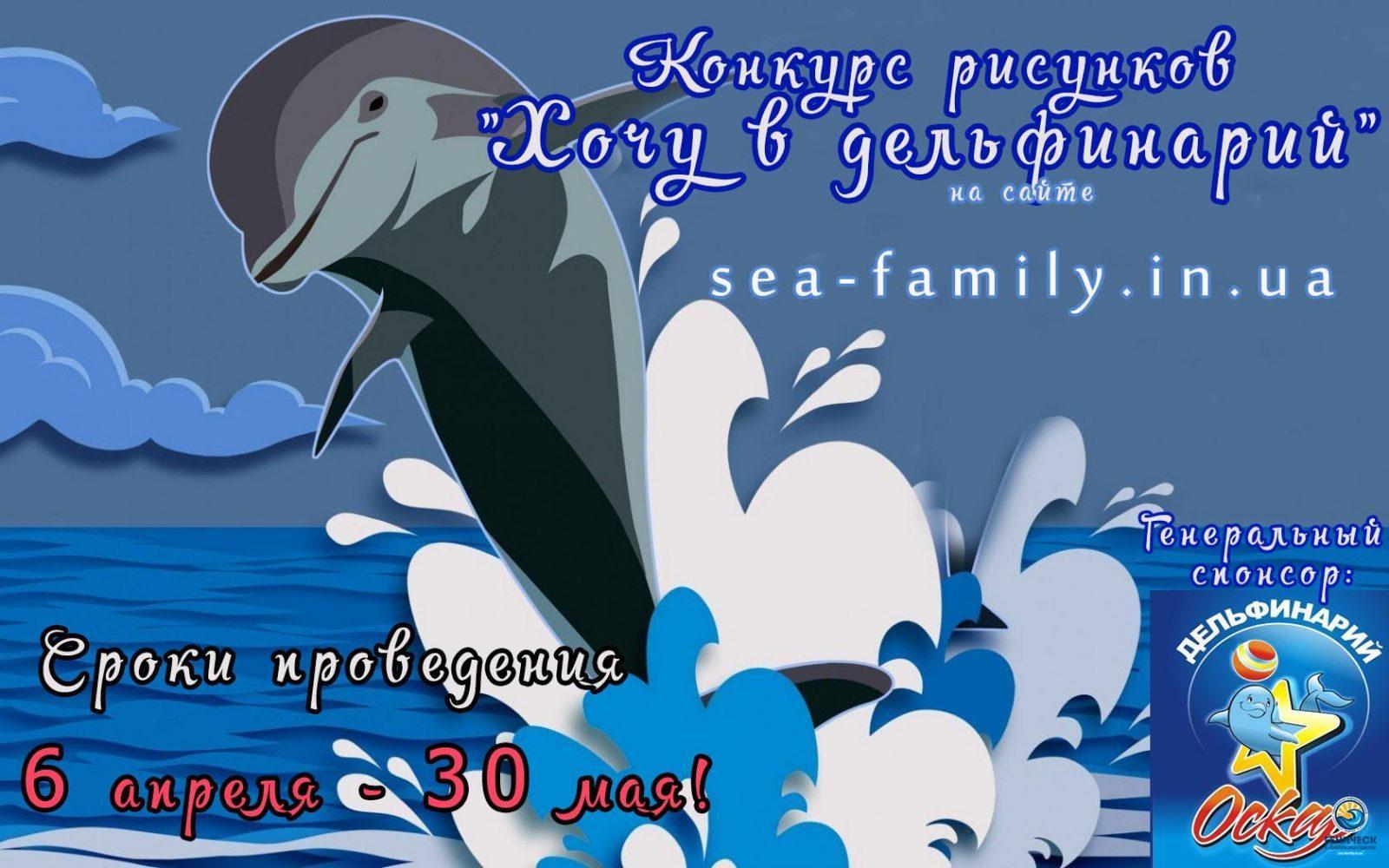 delfiny-more-nebo-bryzgi