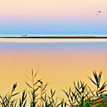 Отдых на Азовском море в Геническом районе